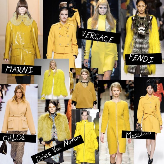 Fall / Winter 2012 Trend